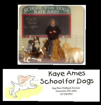 KayeAmes_image_logo